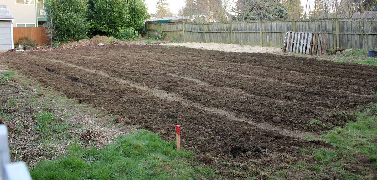 Back yards to food yards mama tee 39 s farm for 2000 sq ft to yards